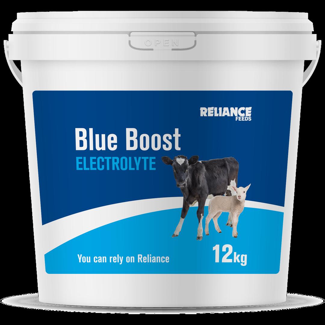 Reliance Blue Boost Electrolyte 12kg